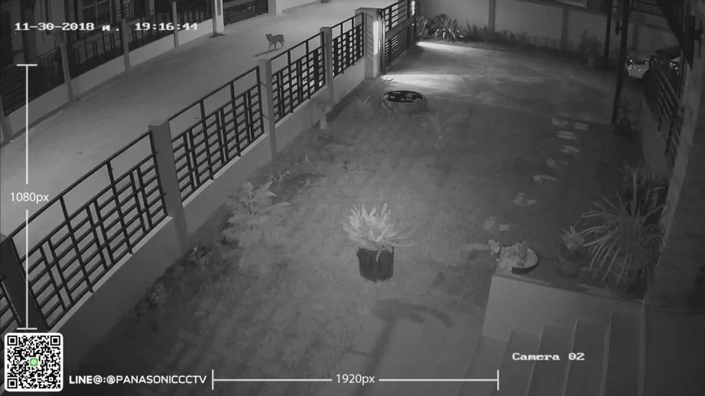 ภาพตอนกลางคืน กล้องวงจรปืด พานาโซนิค panasonic cctv